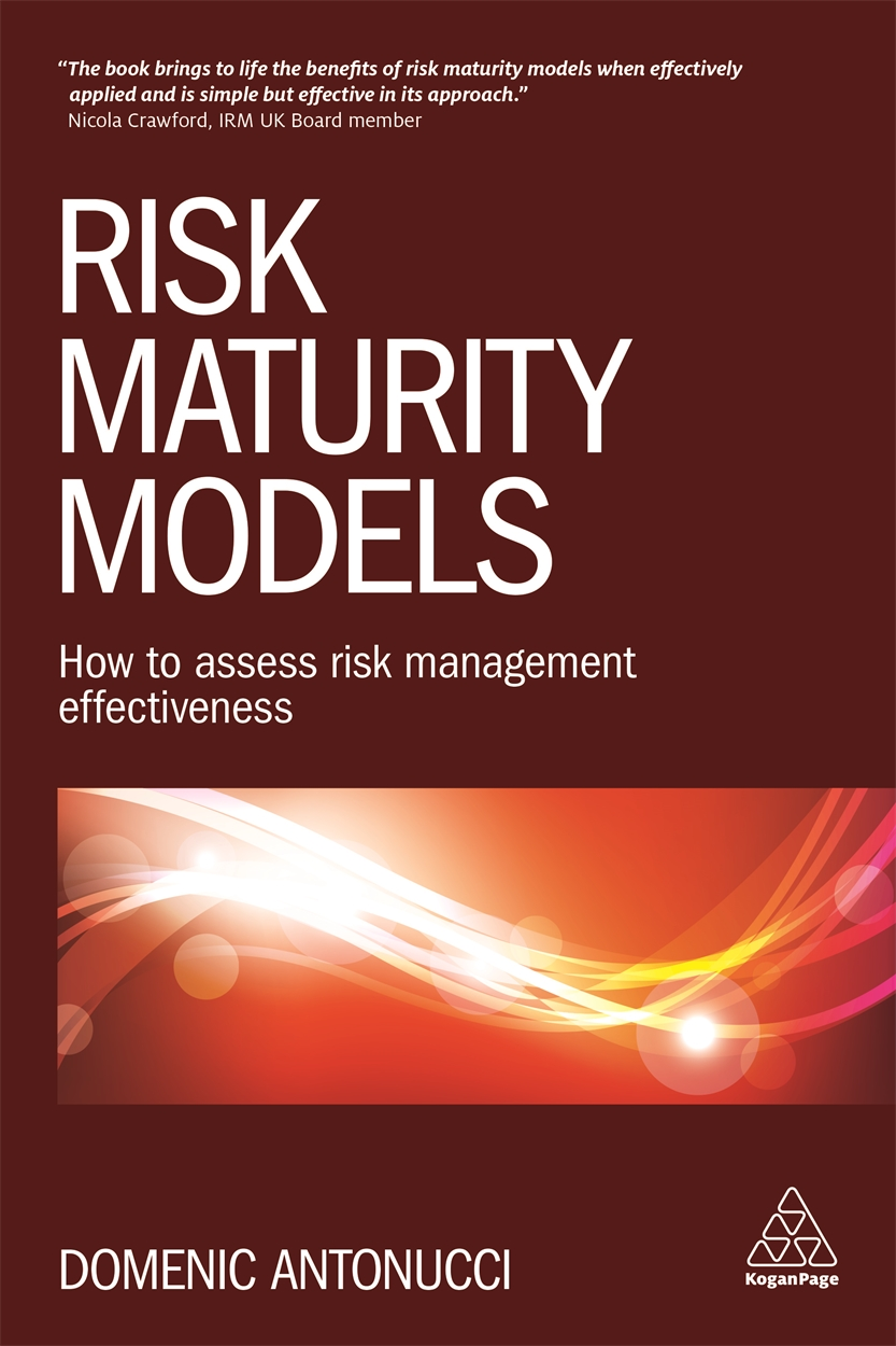 Business Book Cover Job : Risk maturity models