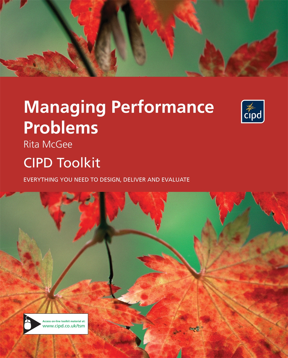 Managing Performance Problems (9781843982074)