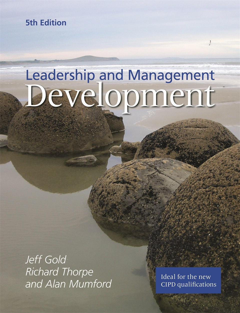 Leadership and Management Development (9781843982449)