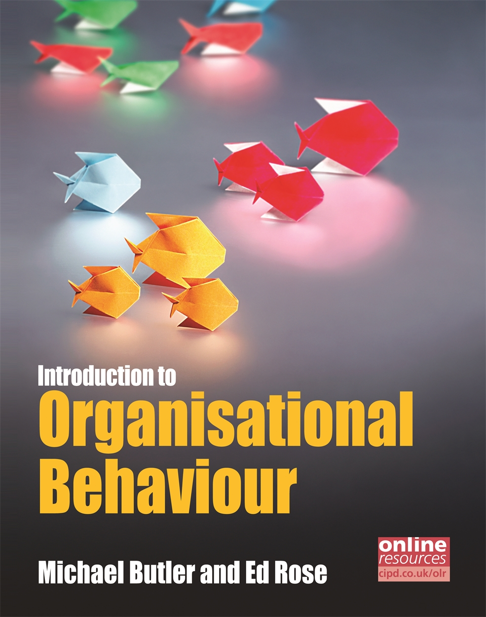 Introduction to Organisational Behaviour (9781843982470)
