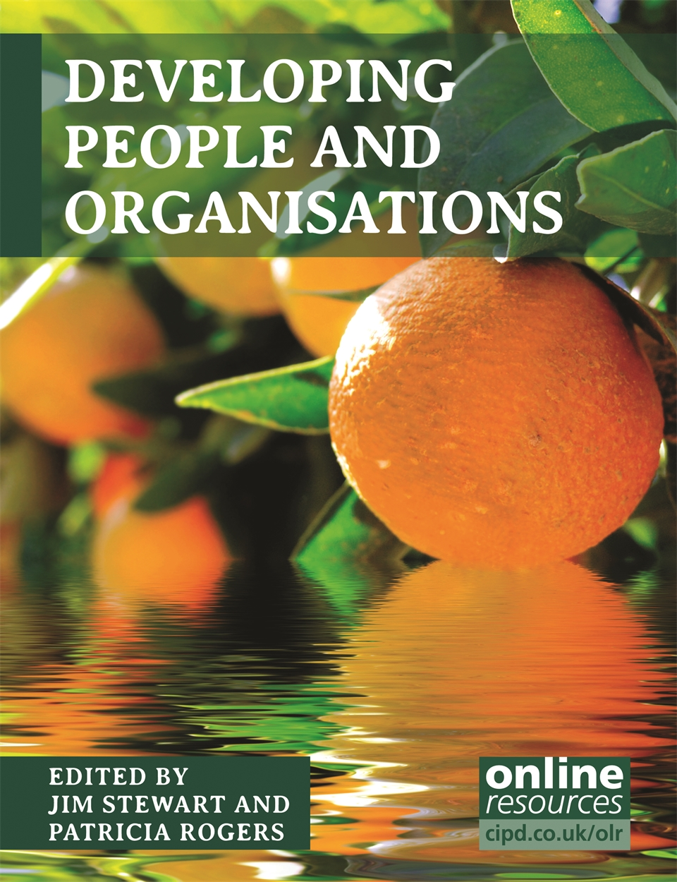 Developing People and Organisations (9781843983132)