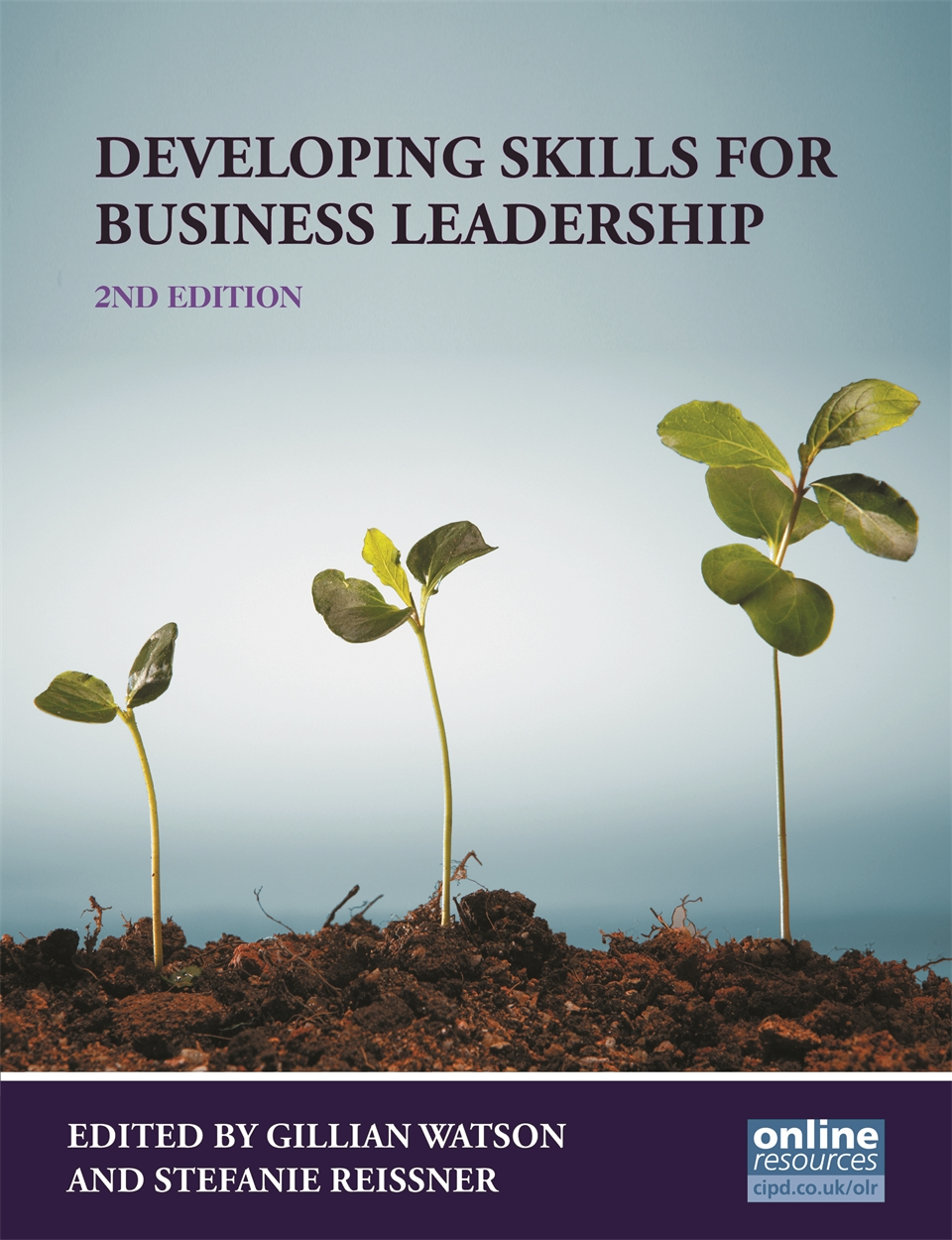 Developing Skills for Business Leadership (9781843983163)