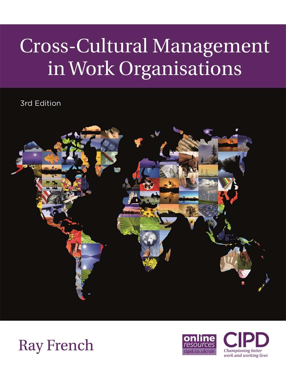 Cross-Cultural Management in Work Organisations (9781843983675)