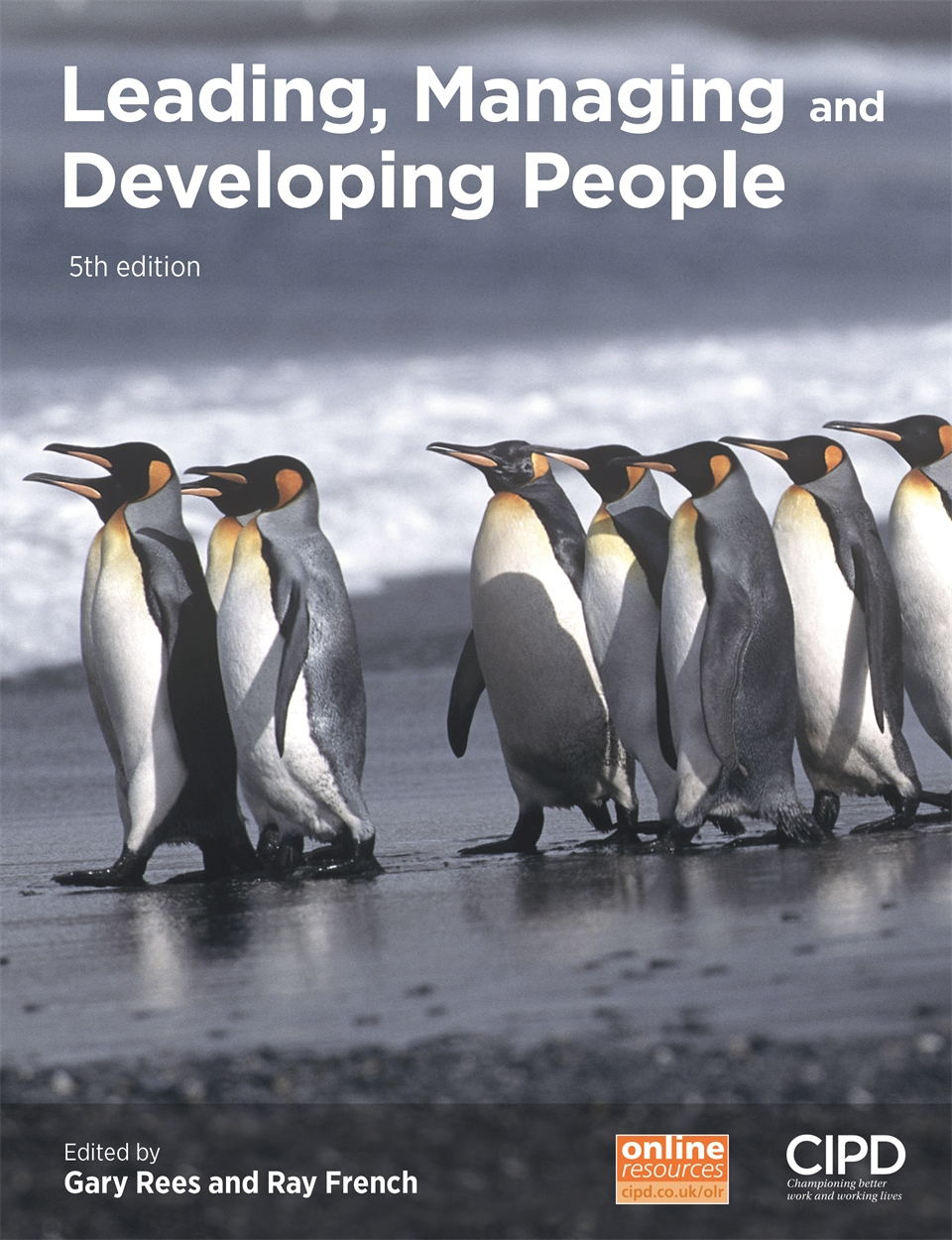 Leading, Managing and Developing People (9781843984122)
