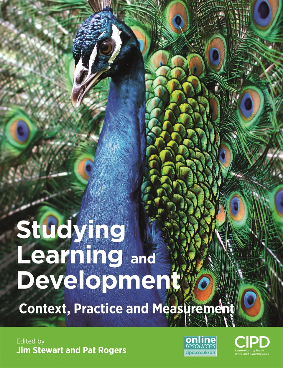 Studying Learning and Development (9781843984146)