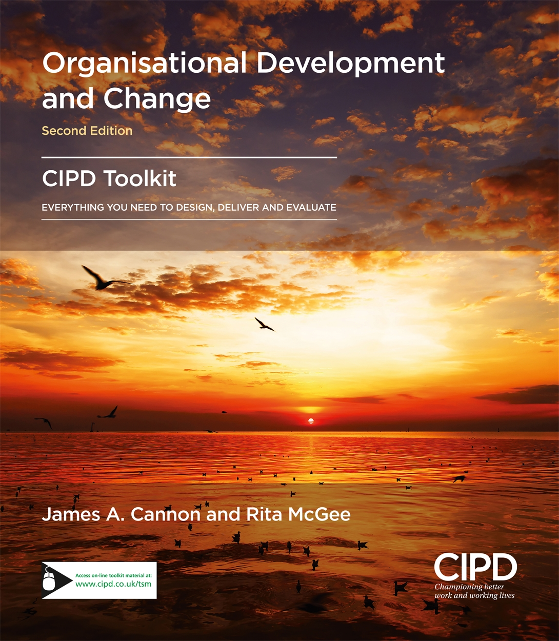 Organisational Development and Change (9781843984177)